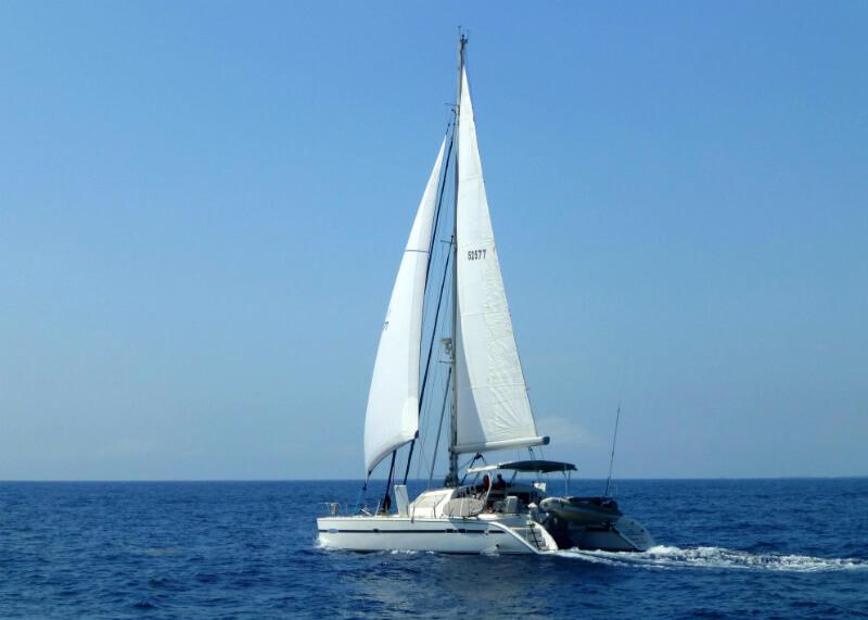 Ausflug Wal- und delfinbeobachtung an bord einer katamaran