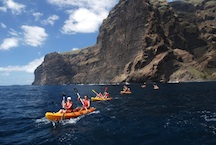 Cetacean watching & kayaking at los gigantes cliffs and masca