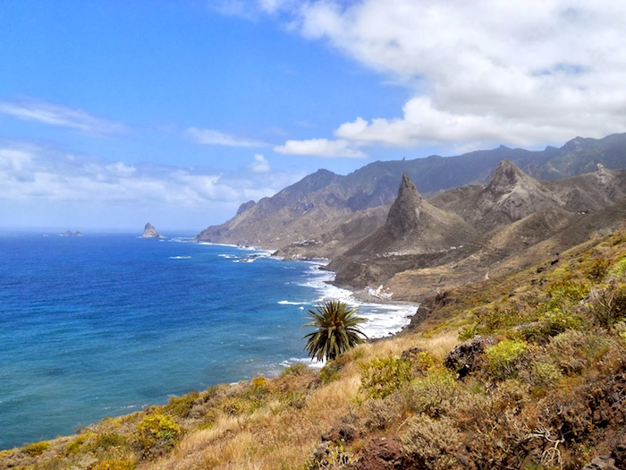 Экскурсия Anaga natural reserve & la laguna tour on minivan with guide