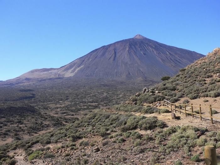 Excursion Teide national park by bus, with official guide